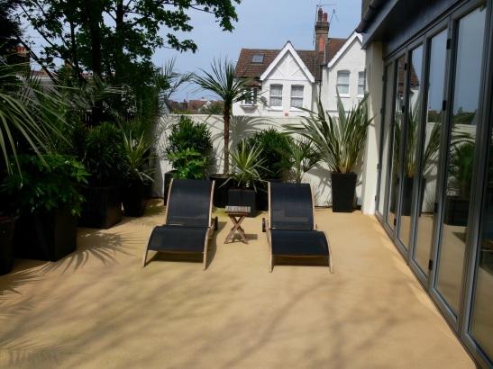 59Pool garden - loungers